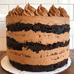<strong>Basic Chocolate Cake</strong> <br> chocolate cake with choice of frosting